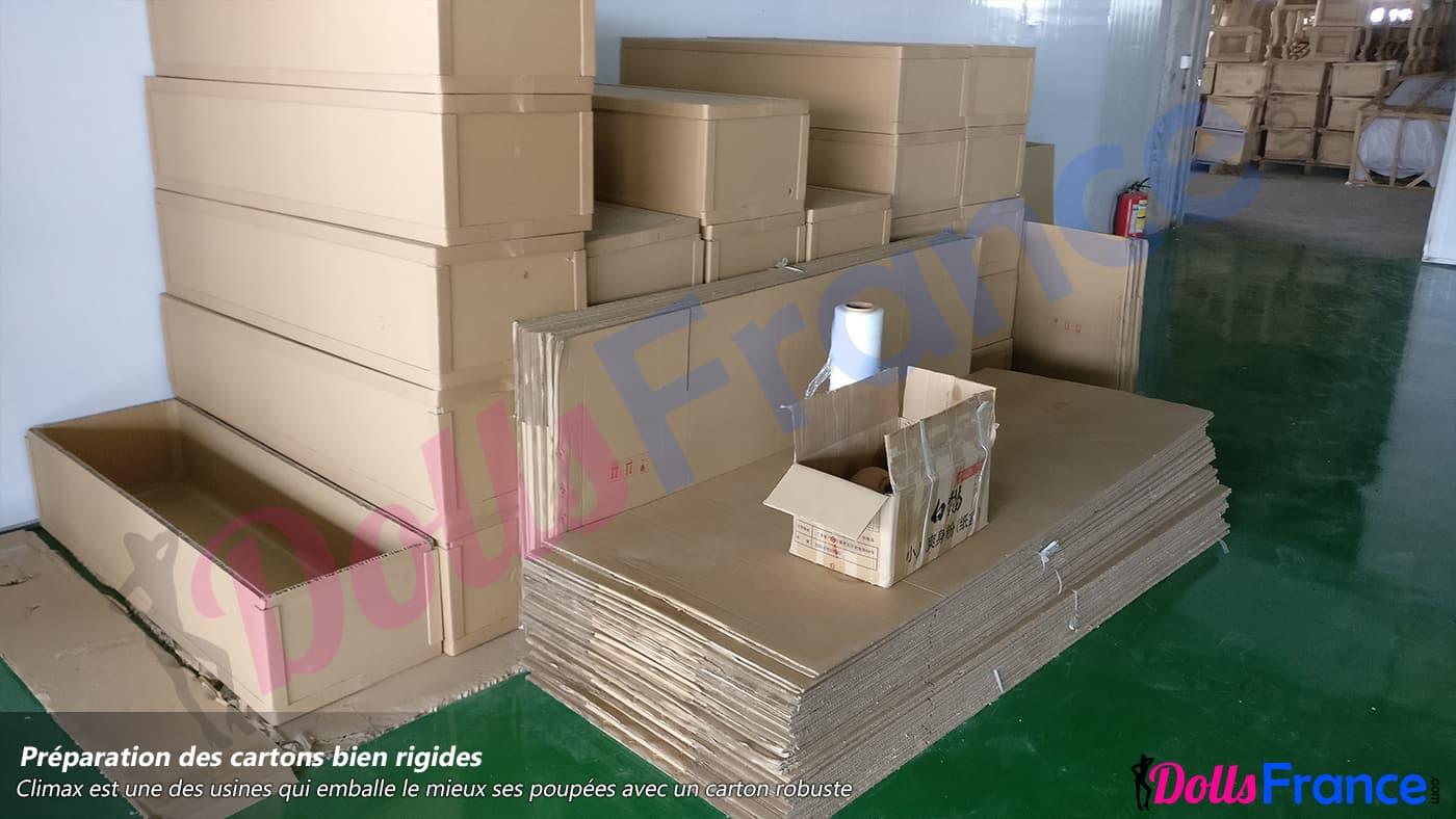 Emballage discret en carton des poupées sexuelles Climax Doll